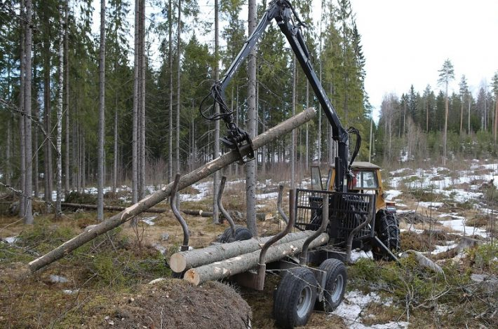 Greifer für Holz