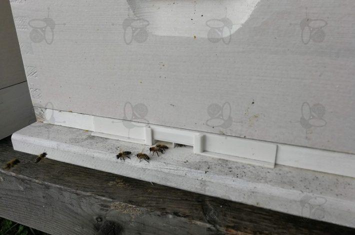 Bienenkorridor